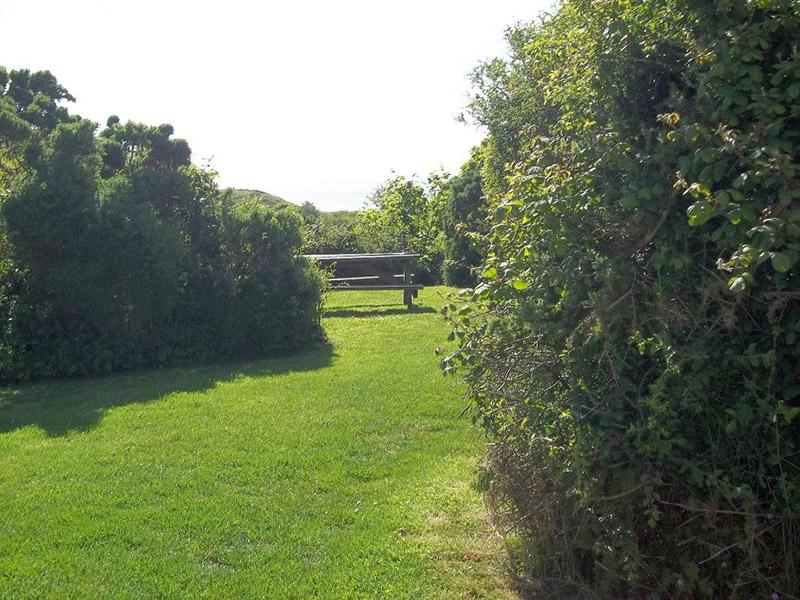 Garn Barcud garden