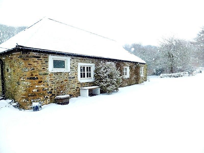 Felin Fawr Snow