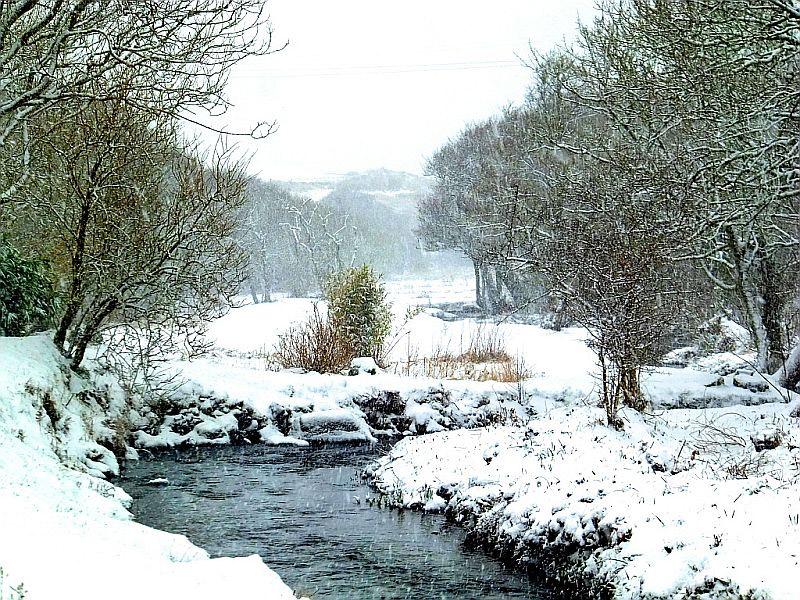 Felin Fawr stream in the snow