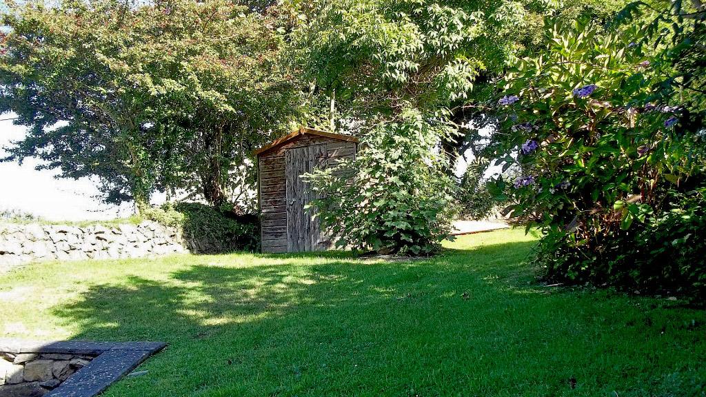 Llanffynnon garden